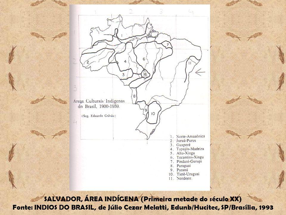SALVADOR, ÁREA INDÍGENA (Primeira metade do século XX)