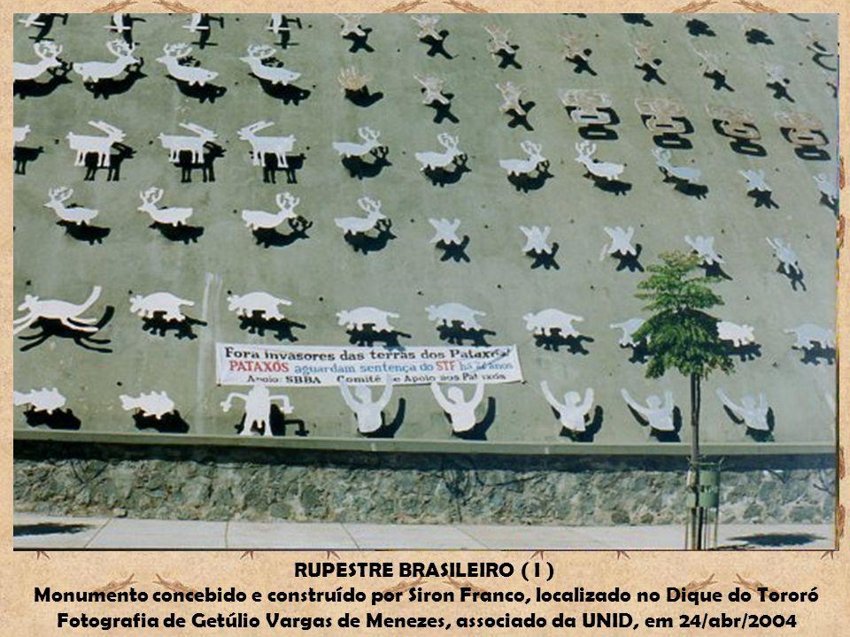 RUPESTRE BRASILEIRO ( I )