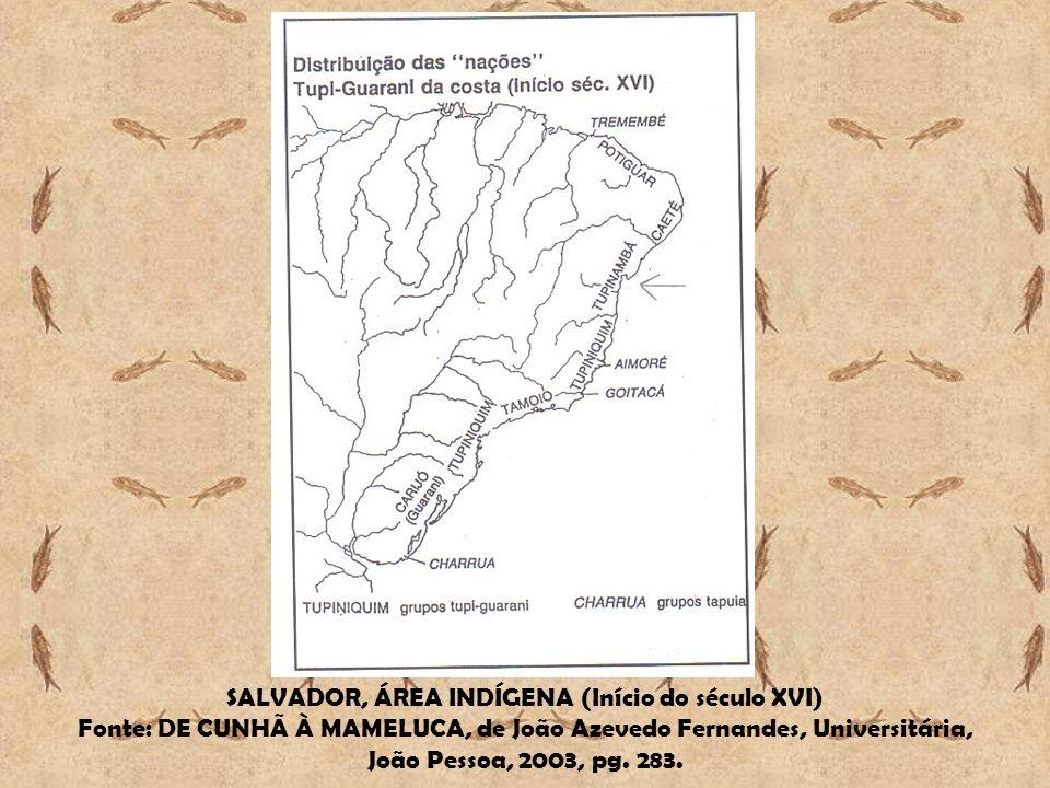 SALVADOR, ÁREA INDÍGENA (Início do século XVI)