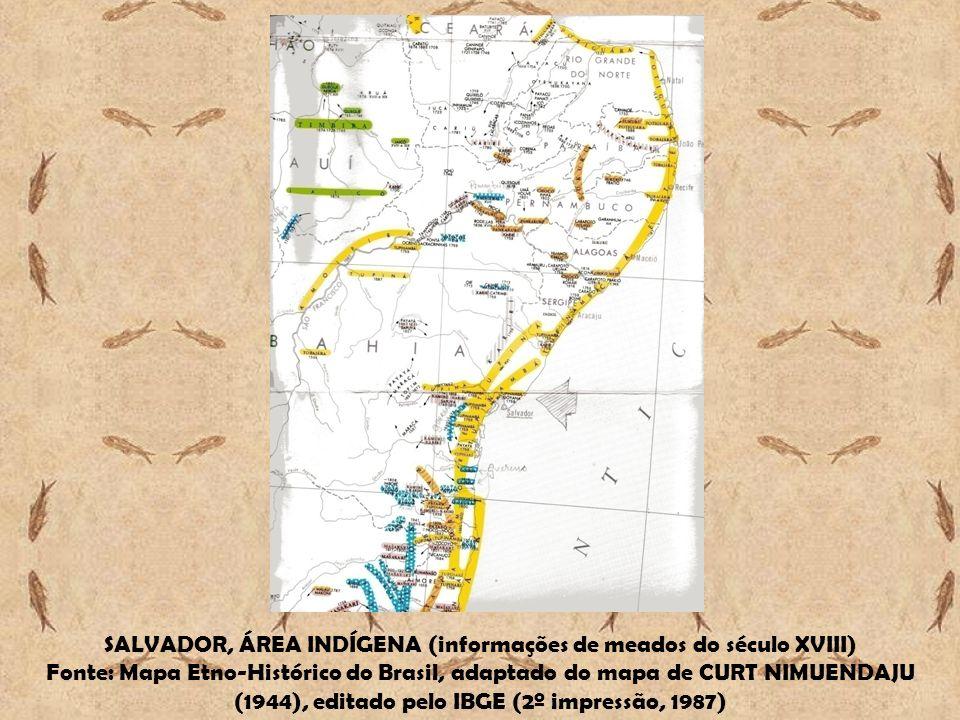 SALVADOR, ÁREA INDÍGENA (informações de meados do século XVIII)