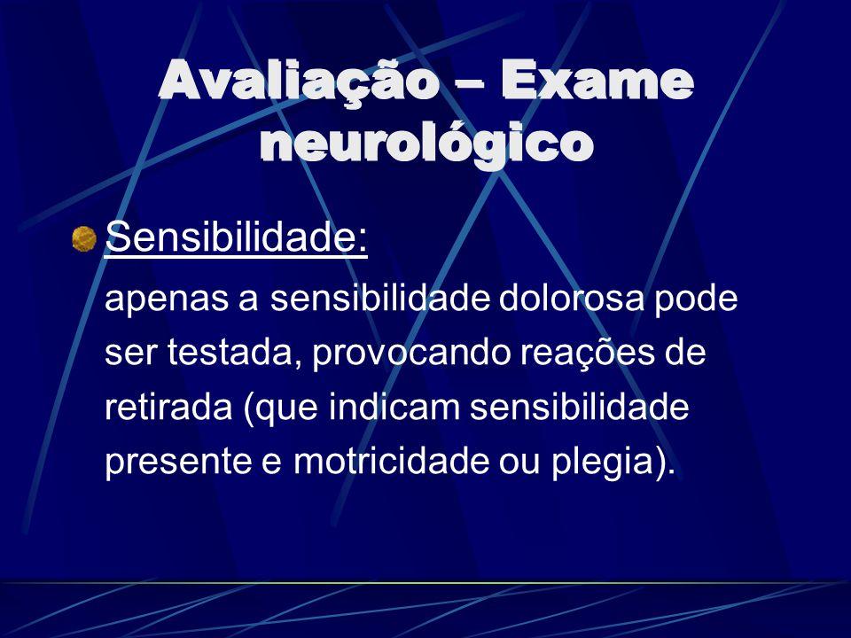 Avaliação – Exame neurológico