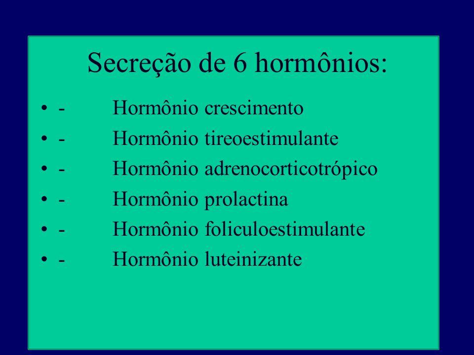 Secreção de 6 hormônios:
