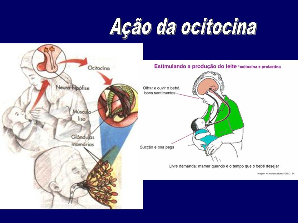 Ação da ocitocina