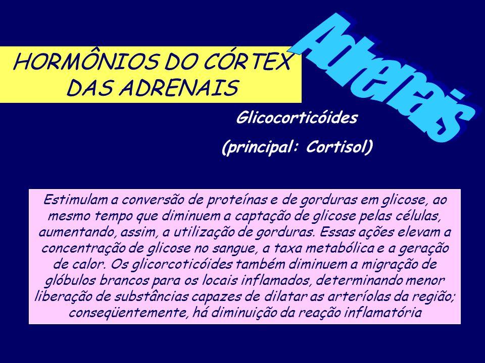 Adrenais HORMÔNIOS DO CÓRTEX DAS ADRENAIS Glicocorticóides