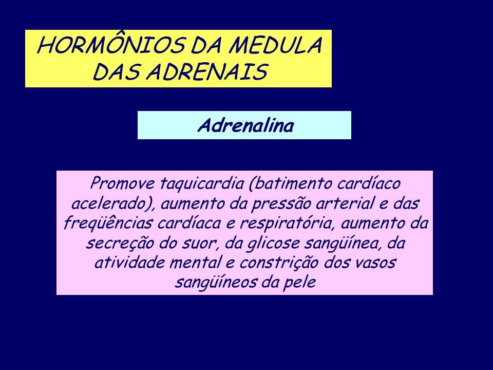 HORMÔNIOS DA MEDULA DAS ADRENAIS
