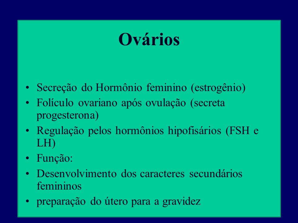 Ovários Secreção do Hormônio feminino (estrogênio)