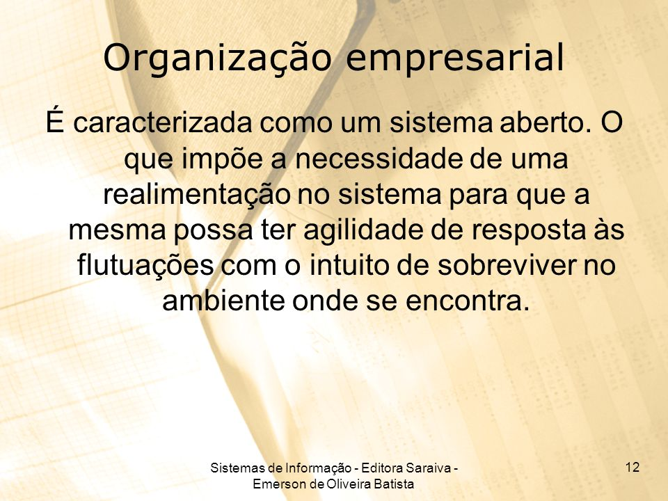 Organização empresarial