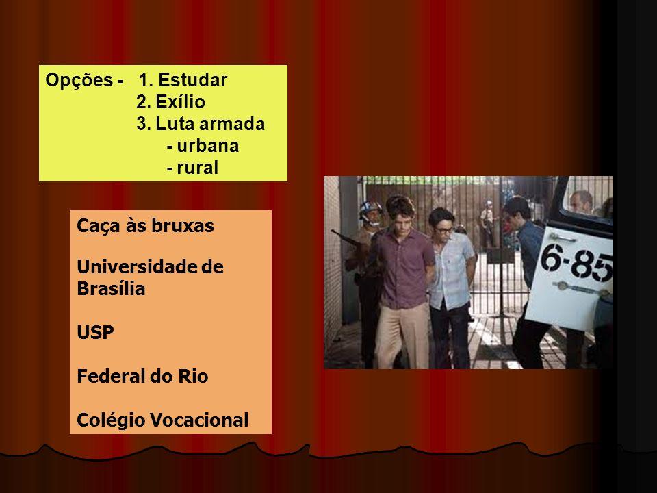 Opções - 1. Estudar 2. Exílio. 3. Luta armada. - urbana. - rural. Caça às bruxas. Universidade de Brasília.