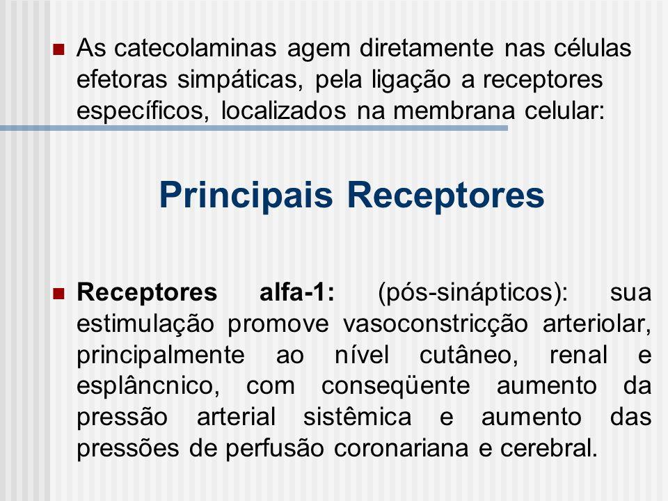 Principais Receptores
