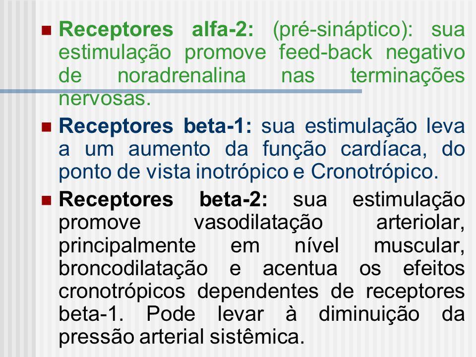 Receptores alfa-2: (pré-sináptico): sua estimulação promove feed-back negativo de noradrenalina nas terminações nervosas.