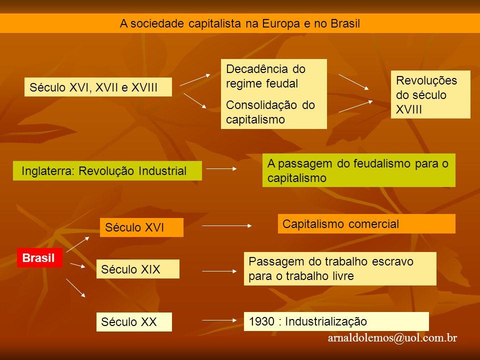 A sociedade capitalista na Europa e no Brasil