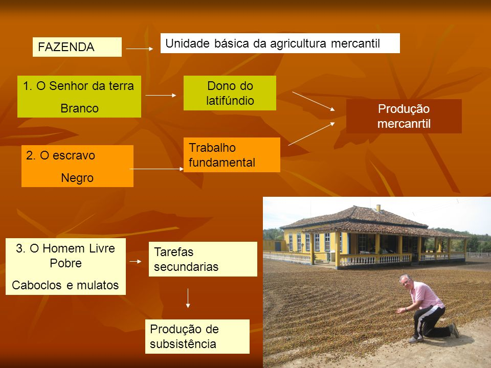 Unidade básica da agricultura mercantil