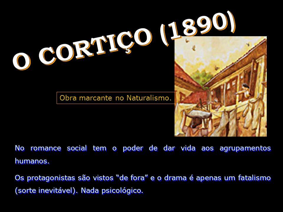 O CORTIÇO (1890) Obra marcante no Naturalismo.