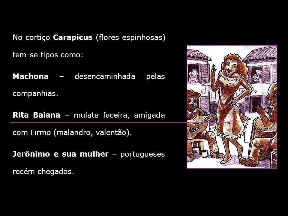 No cortiço Carapicus (flores espinhosas) tem-se tipos como: