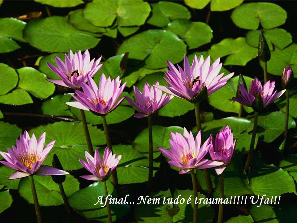 Afinal... Nem tudo é trauma!!!!! Ufa!!!
