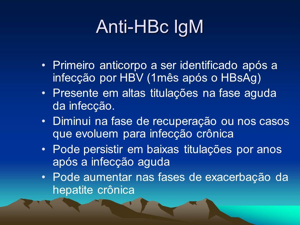 Anti-HBc IgMPrimeiro anticorpo a ser identificado após a infecção por HBV (1mês após o HBsAg)