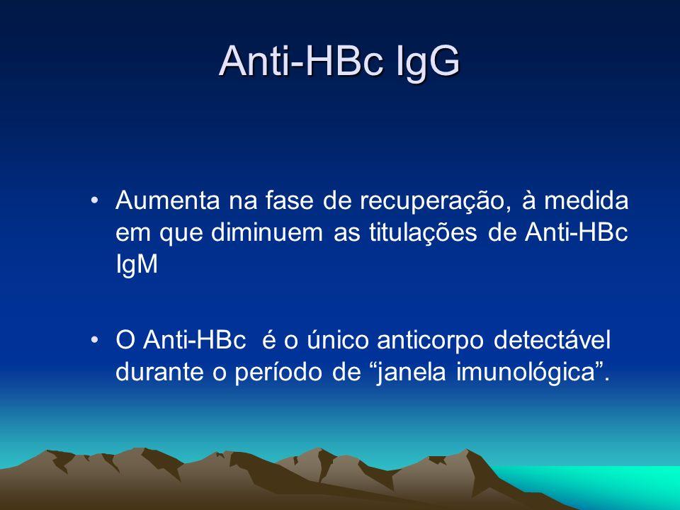 Anti-HBc IgGAumenta na fase de recuperação, à medida em que diminuem as titulações de Anti-HBc IgM.