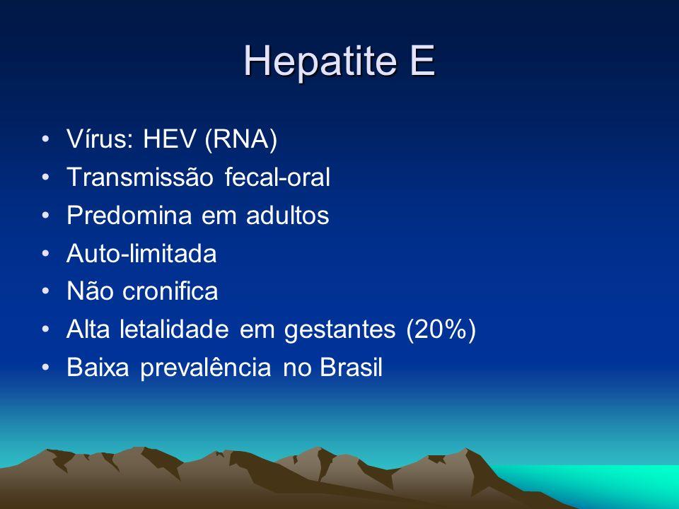 Hepatite E Vírus: HEV (RNA) Transmissão fecal-oral