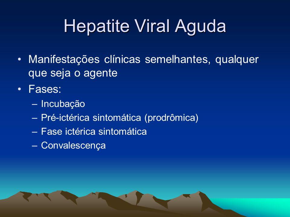 Hepatite Viral Aguda Manifestações clínicas semelhantes, qualquer que seja o agente. Fases: Incubação.