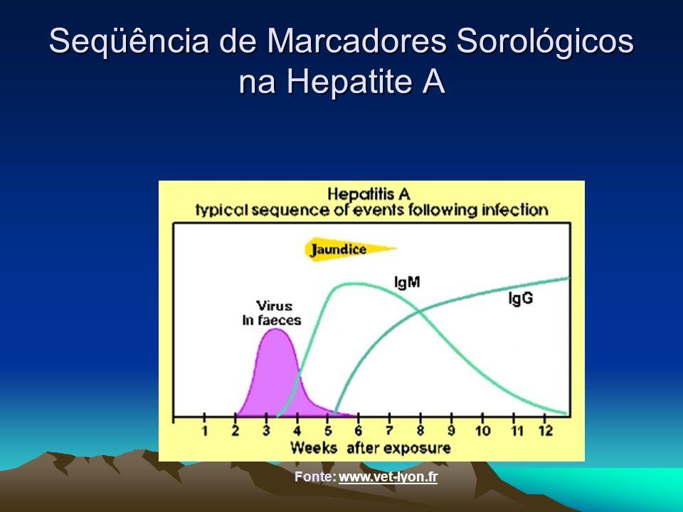 Seqüência de Marcadores Sorológicos na Hepatite A