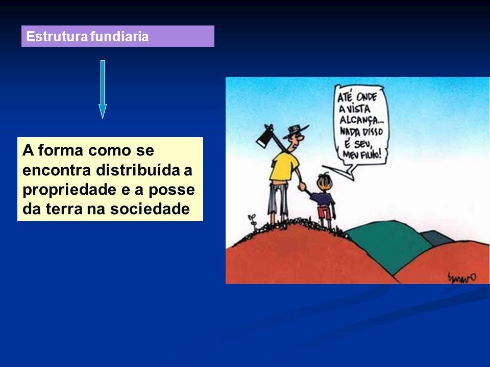 Estrutura fundiaria A forma como se encontra distribuída a propriedade e a posse da terra na sociedade.