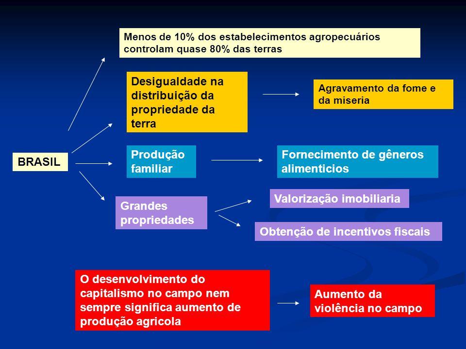 Desigualdade na distribuição da propriedade da terra