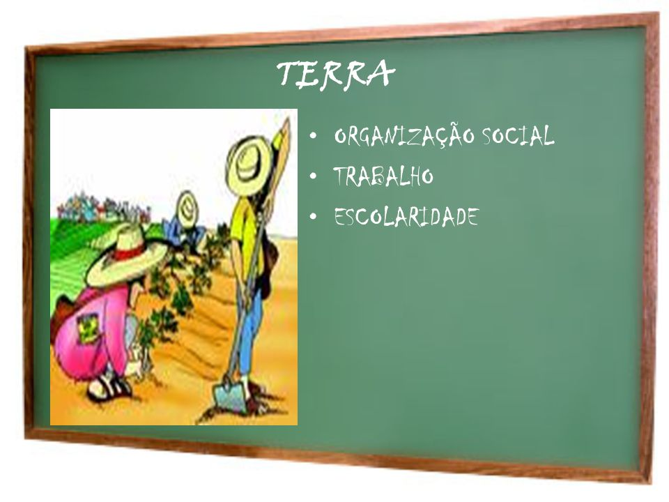 TERRA ORGANIZAÇÃO SOCIAL TRABALHO ESCOLARIDADE