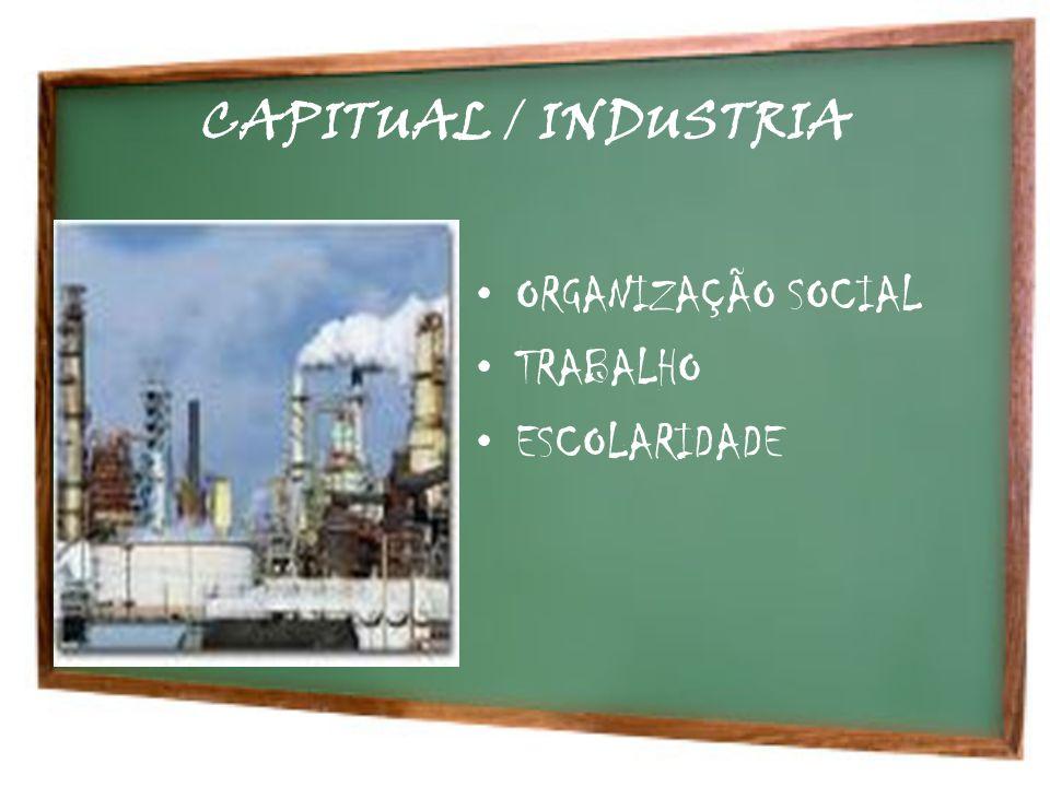 CAPITUAL / INDUSTRIA ORGANIZAÇÃO SOCIAL TRABALHO ESCOLARIDADE
