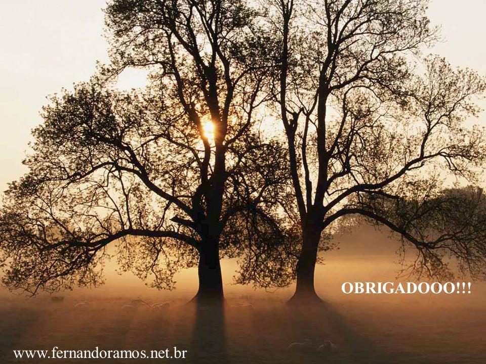 OBRIGADOOO!!! www.fernandoramos.net.br