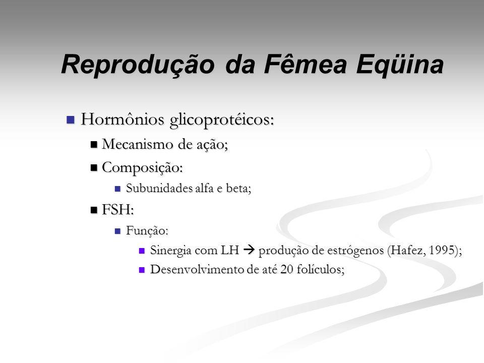 Reprodução da Fêmea Eqüina