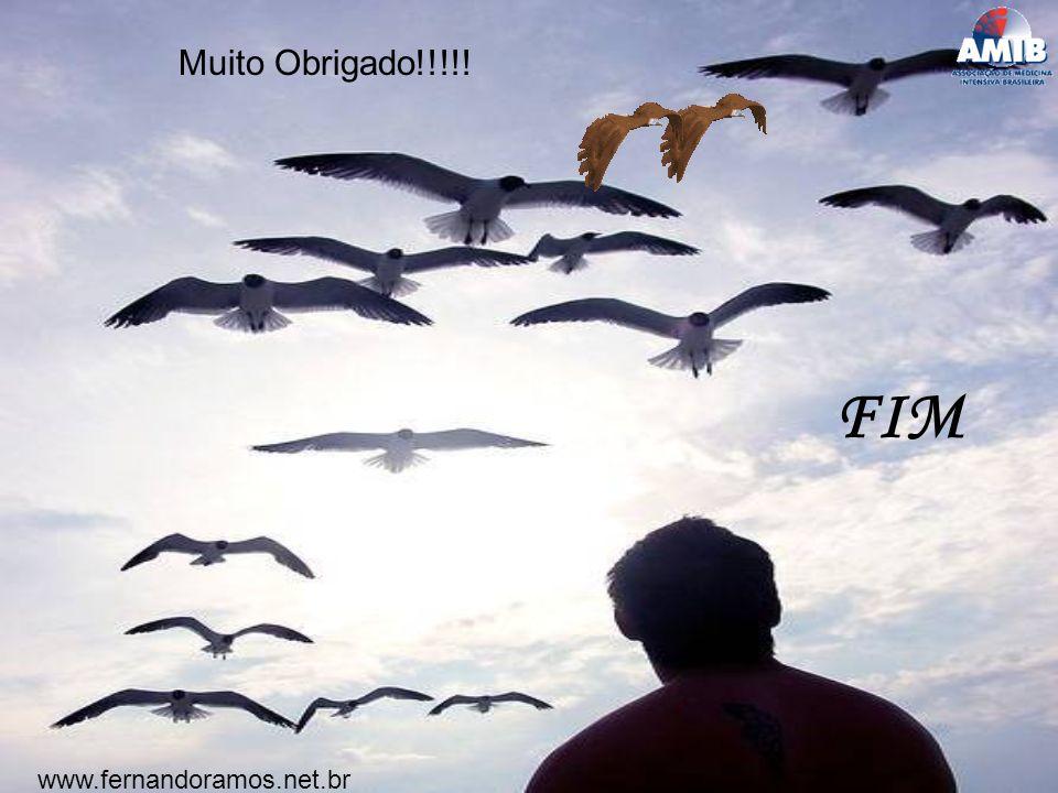 Muito Obrigado!!!!! FIM www.fernandoramos.net.br