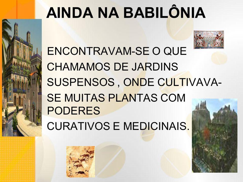 AINDA NA BABILÔNIA ENCONTRAVAM-SE O QUE CHAMAMOS DE JARDINS