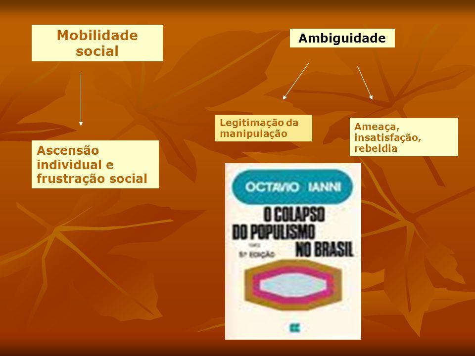 Mobilidade social Ambiguidade Ascensão individual e frustração social