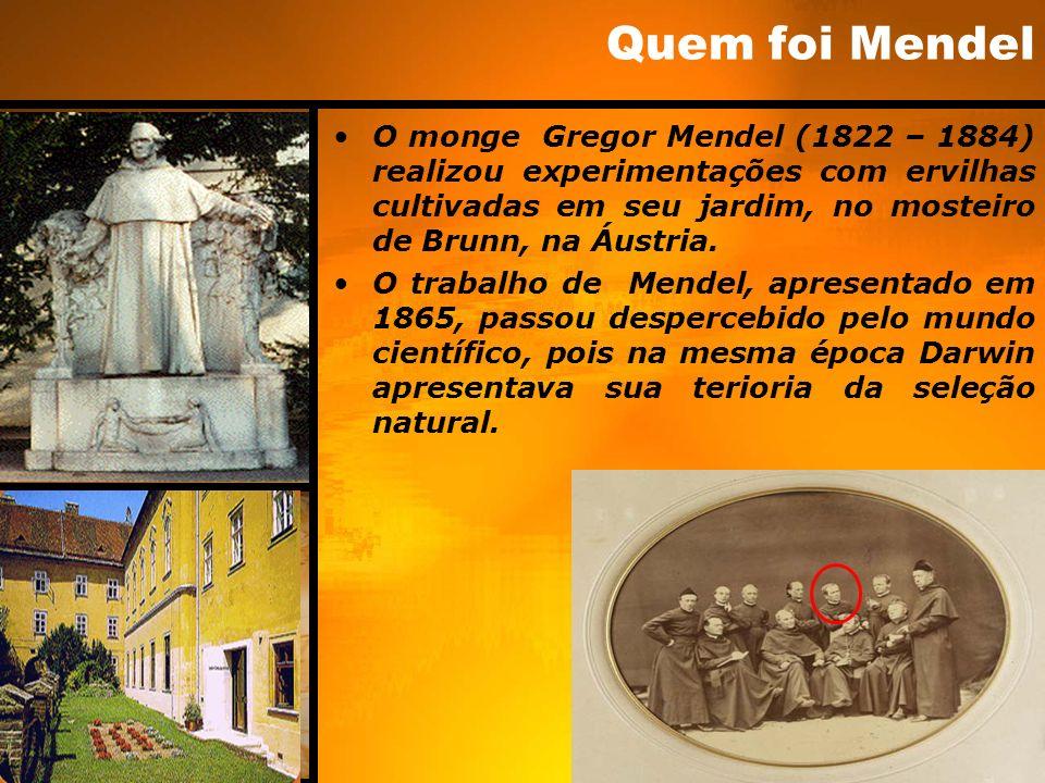 Quem foi Mendel