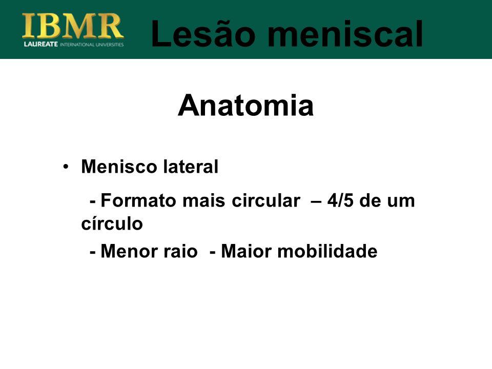 Anatomia Lesão meniscal Menisco lateral
