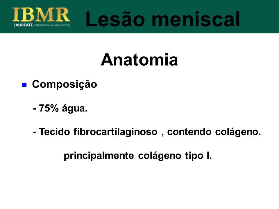 Anatomia Lesão meniscal Composição - 75% água.