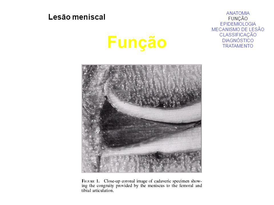 ANATOMIA FUNÇÃO EPIDEMIOLOGIA MECANISMO DE LESÃO CLASSIFICAÇÃO DIAGNÓSTICO TRATAMENTO