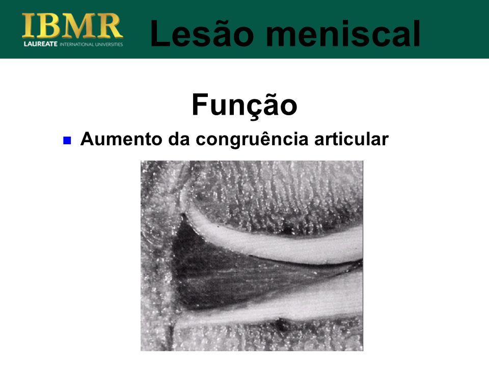 Lesão meniscal Função Aumento da congruência articular