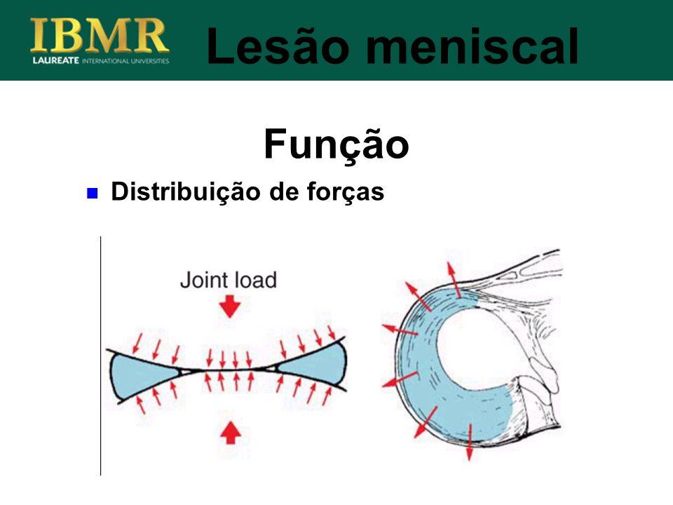 Lesão meniscal Função Distribuição de forças
