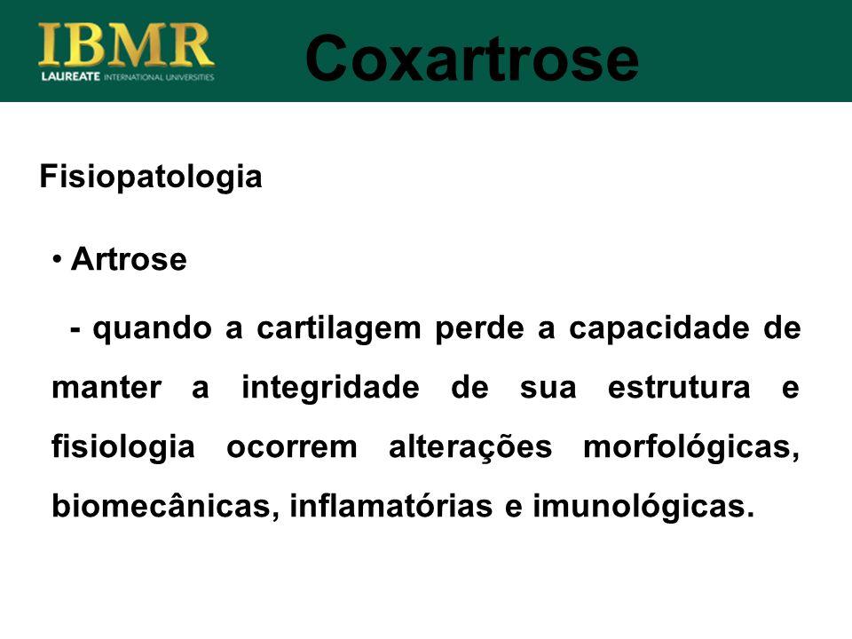 Coxartrose Fisiopatologia Artrose