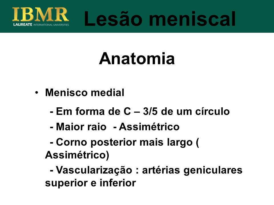 Anatomia Lesão meniscal Menisco medial