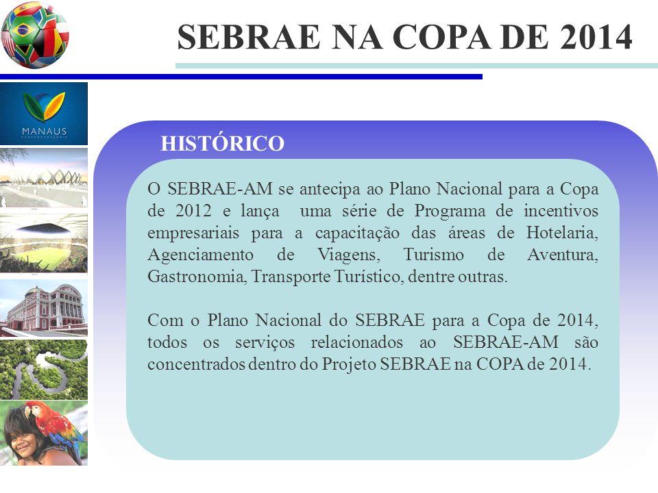 SEBRAE NA COPA DE 2014 HISTÓRICO