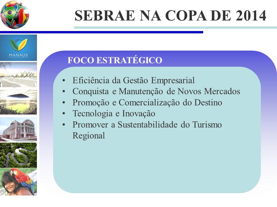 SEBRAE NA COPA DE 2014 FOCO ESTRATÉGICO
