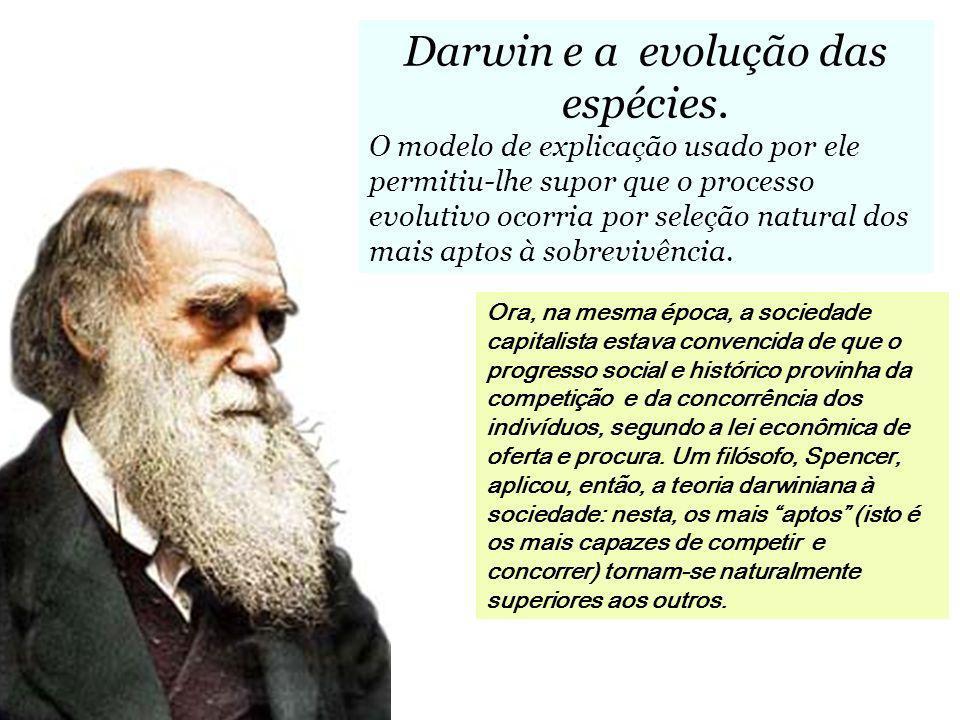 Darwin e a evolução das espécies.