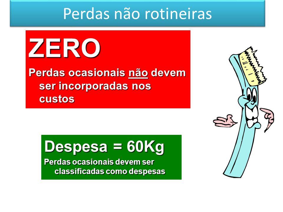 ZERO Perdas não rotineiras Despesa = 60Kg