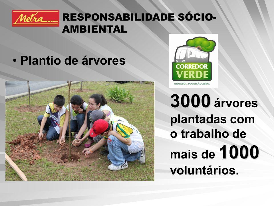 3000 árvores plantadas com o trabalho de mais de 1000 voluntários.