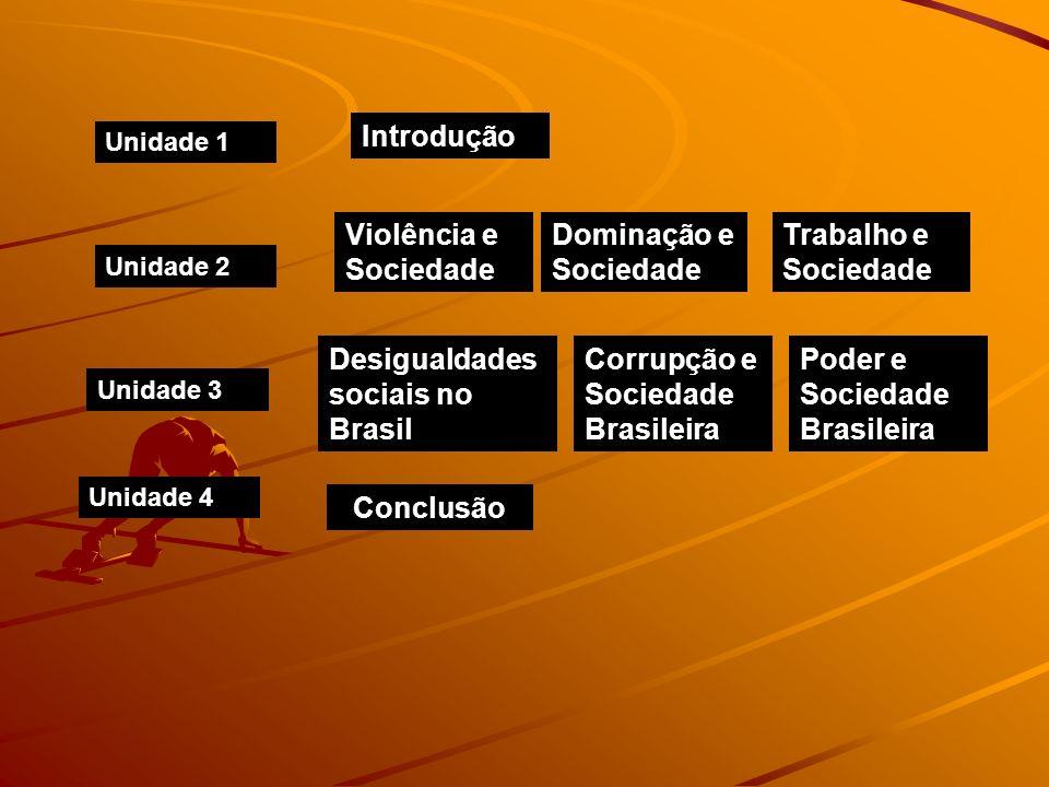 Desigualdades sociais no Brasil Corrupção e Sociedade Brasileira