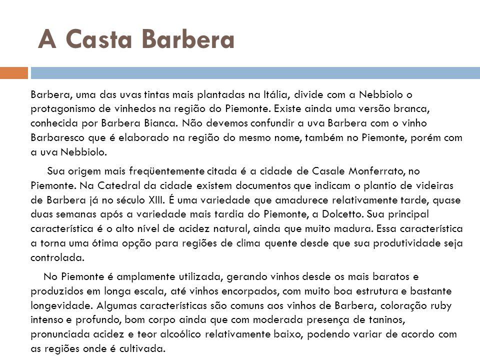 A Casta Barbera