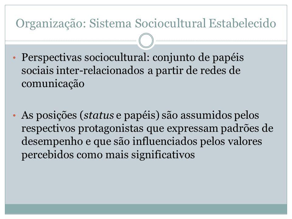 Organização: Sistema Sociocultural Estabelecido