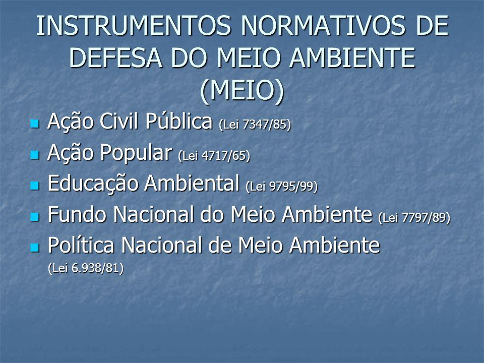 INSTRUMENTOS NORMATIVOS DE DEFESA DO MEIO AMBIENTE (MEIO)